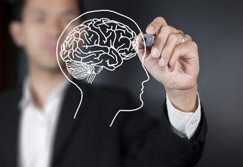 Mind & Wellness